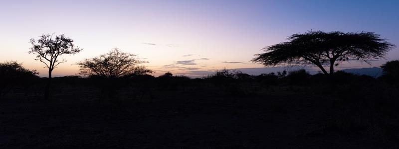 Twilight. Awash National park