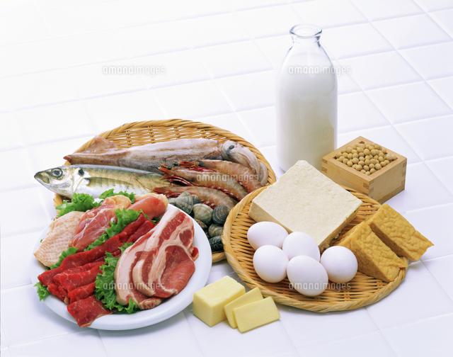 タンパクパク質♬