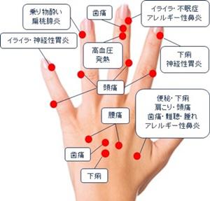 指先は脳と繋がっている