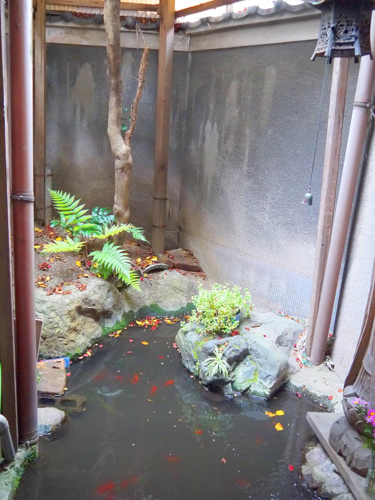 男湯の脱衣場から見える池