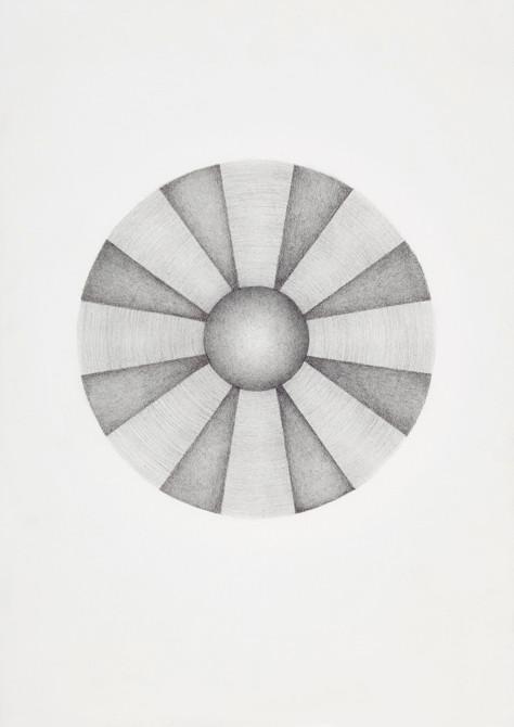 """""""ode aan Lautner""""  potlood - papier  30 x 21 cm  2010"""