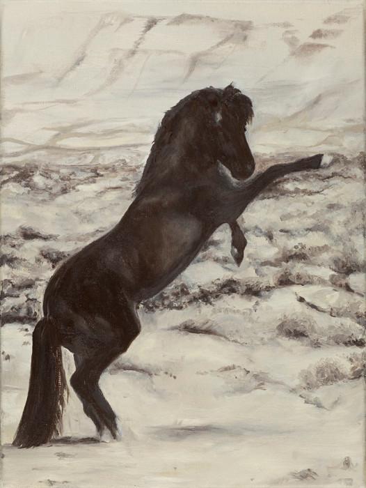 """Deserthorse""   40x30 cm   oil-canvas   2011"