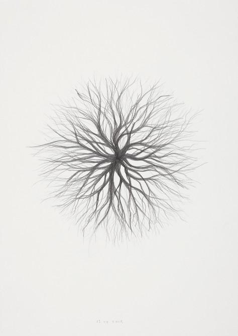 z.t. potlood - papier  30 x 21 cm  2012