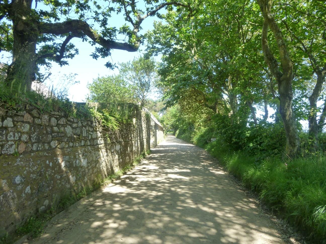 La route vers le village