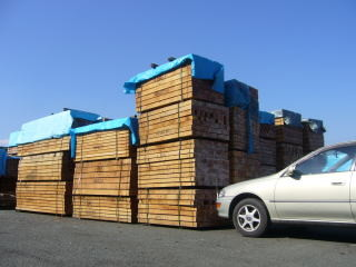 材木(主に南洋材を輸入して加工しています)