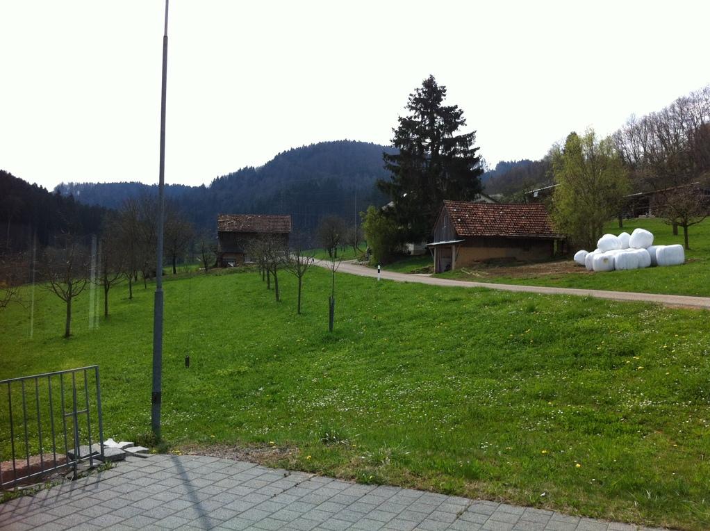 Aussicht von Schützenstube/Sitzplatz Richtung Buschberg