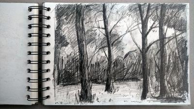 Monats-Challenge, Bleistiftzeichnung, Landschaft, Bäume am waldrand bei bad heilbrunn, Richtung Moorsee