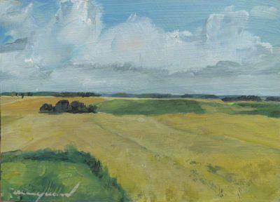 Landschaft am Westerholz, Kornfelder und Himmel