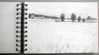 Monats-Challenge, Bleistiftzeichnung, Landschaft, Bäume, Wiese, Wald am Horizont