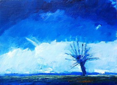 Blauer Himmel, Wlke am Horizont, Weide im Gegenlicht