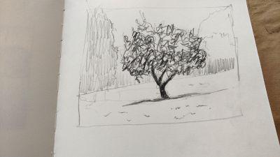 Parkvilla/Bad Heilbrun, Zeichnung, Baum und Laubwerk