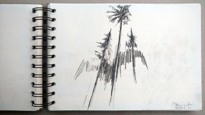 Monats-Challenge, Bleistiftzeichnung, Landschaft, Fichten