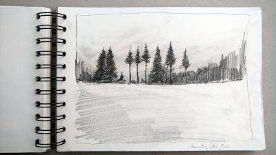 Monats-Challenge, Bleistiftzeichnung, Landschaft, waldrand am lech