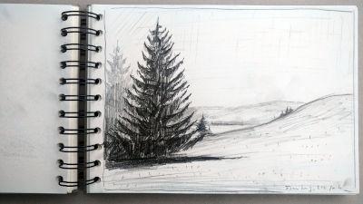Monats-Challenge, Bleistiftzeichnung, Landschaft, bei Füssen, Tanne, Wiese, see im Hintergrund