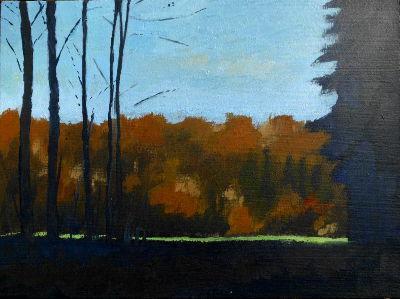 Wald, wiese, licht, herbst