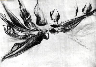 Zeichnung, Tulpen, Kohle