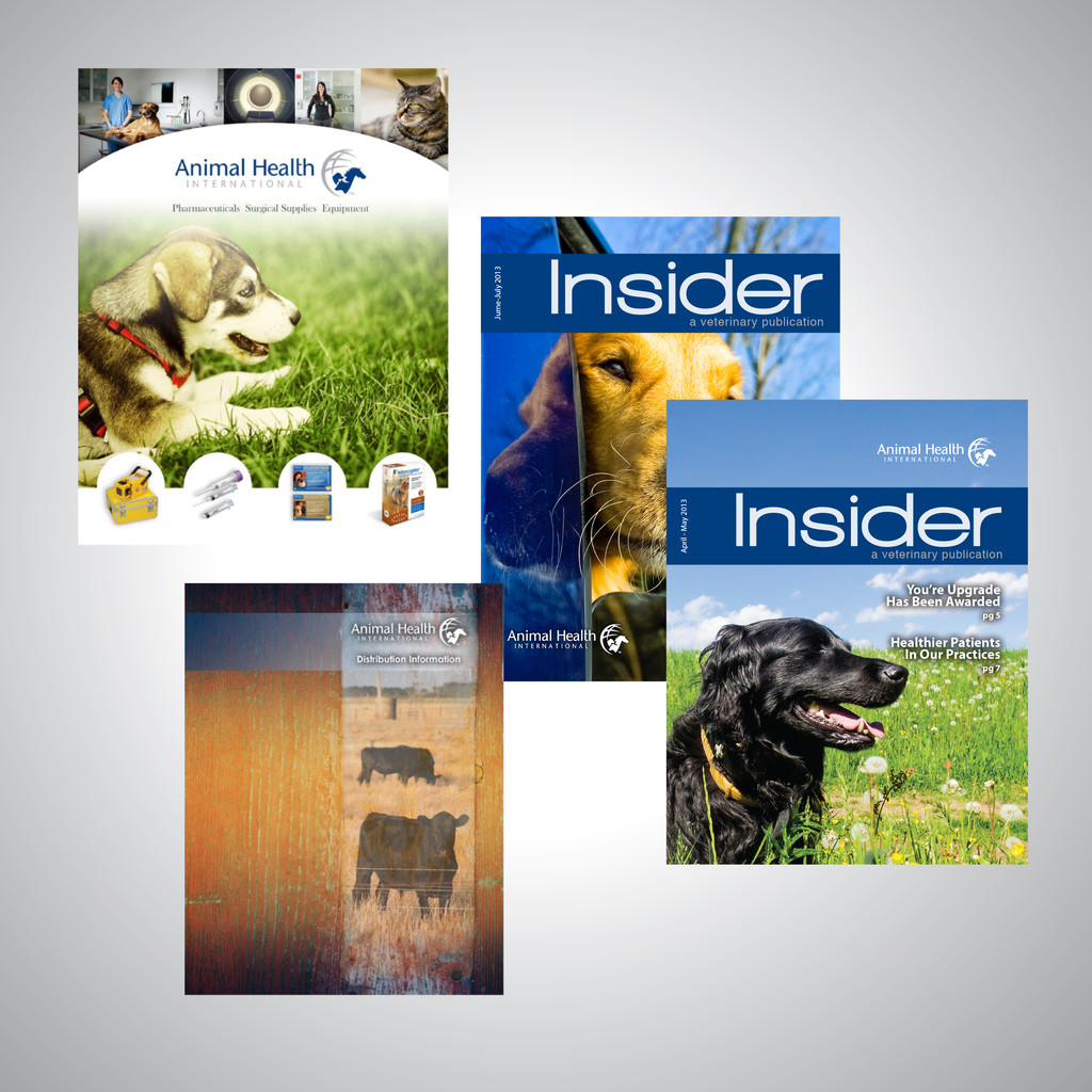 Complete branding for 1600 employee company - Catalogs and literature