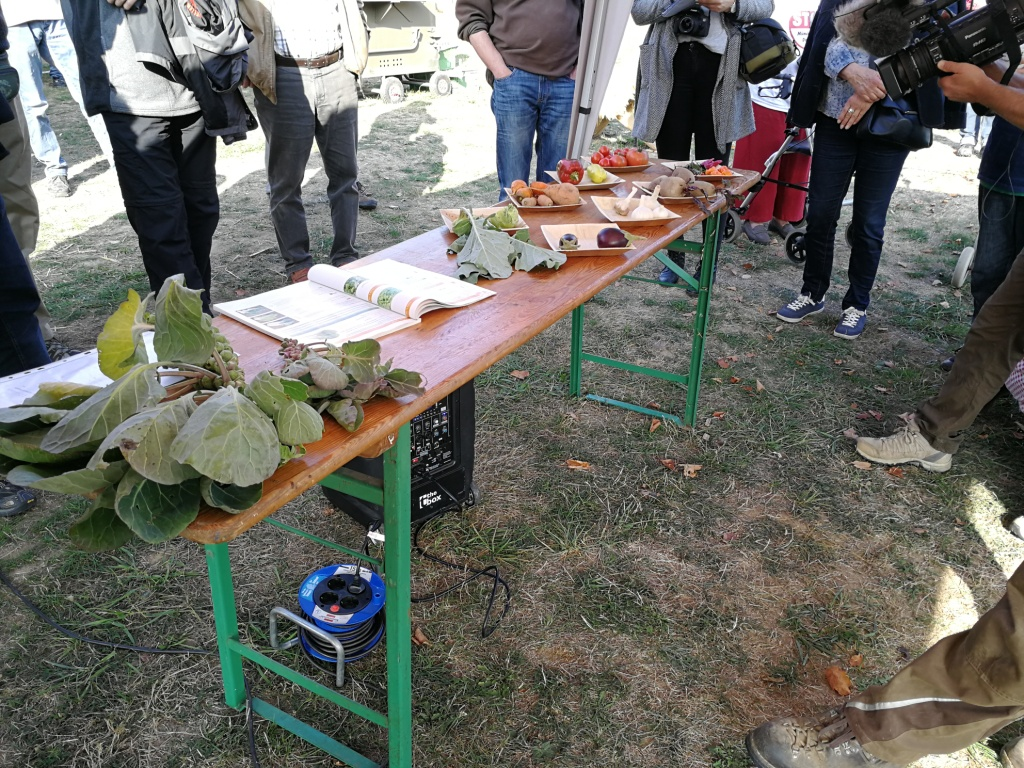 Ein Teil des angebauten Gemüses wurde zur Veranschaulichung ausgestellt und auch im Detail erklärt