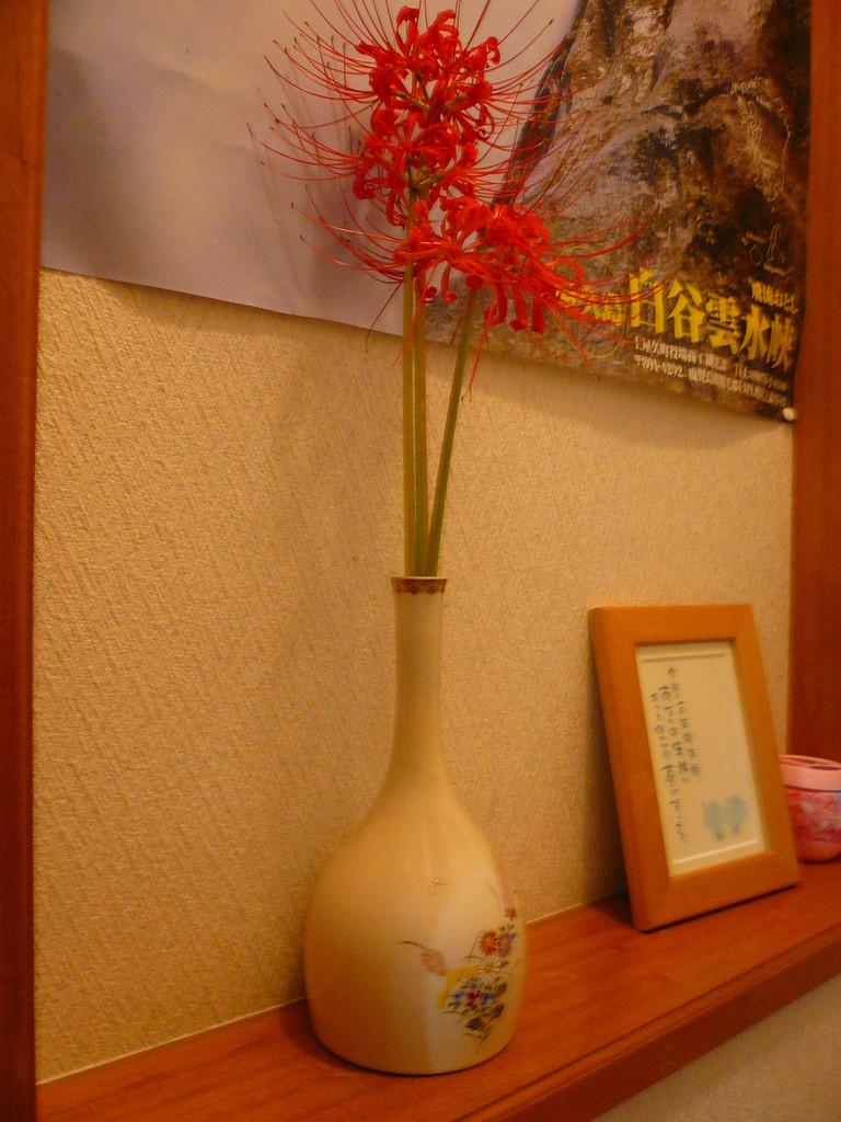 季節ごとに代わる花