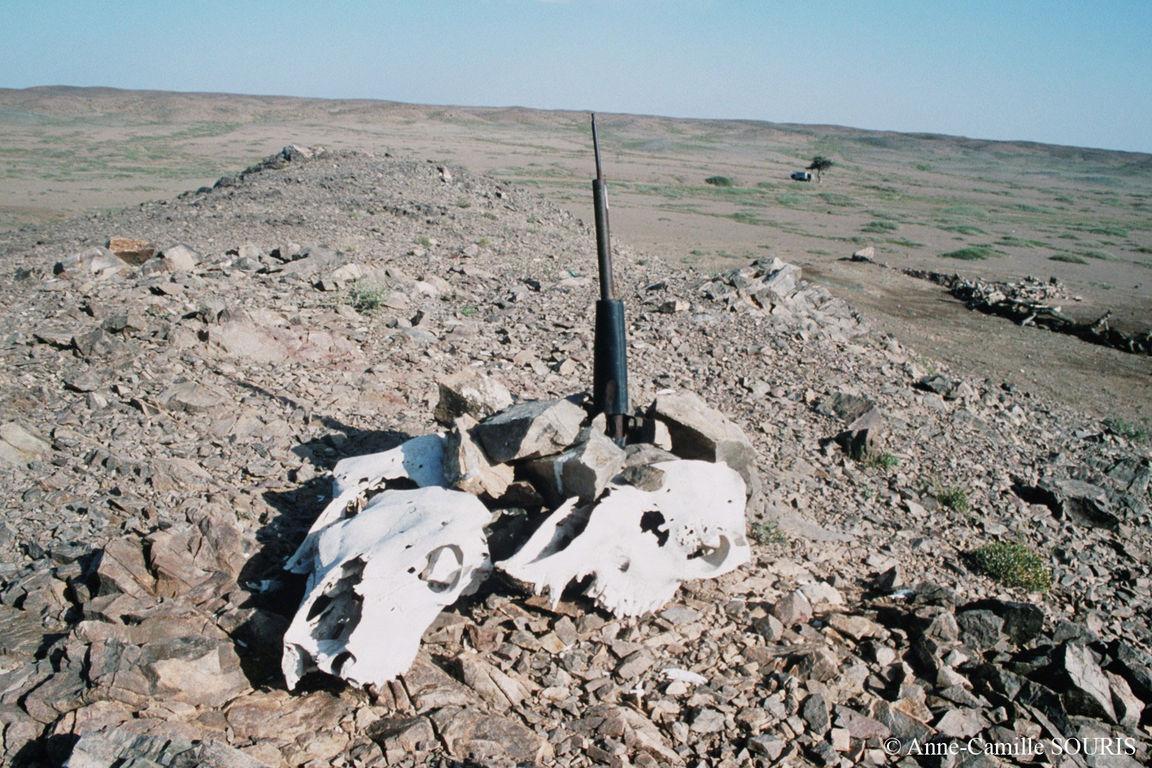 """Traditionnel """"ovoo"""" mongol, mais avec un fusil au sommet et entouré de crânes d'animaux, trouvé au sommet d'une colline à proximité d'un point d'eau"""