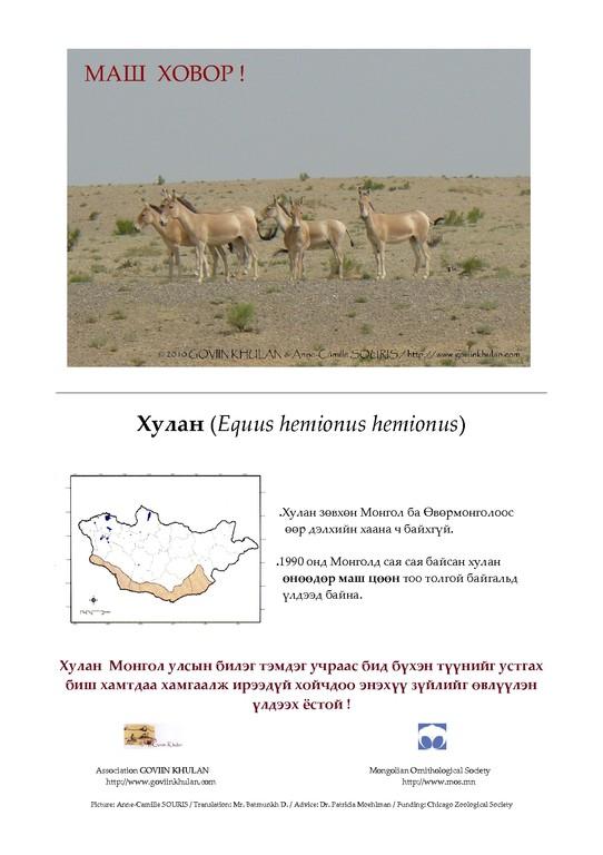 Poster présentant la distribution de l'hémione en Mongolie et son statut, ce poster a été distribué aux rangers, écoles, mairies, magasins, ... / © Association GOVIIN KHULAN