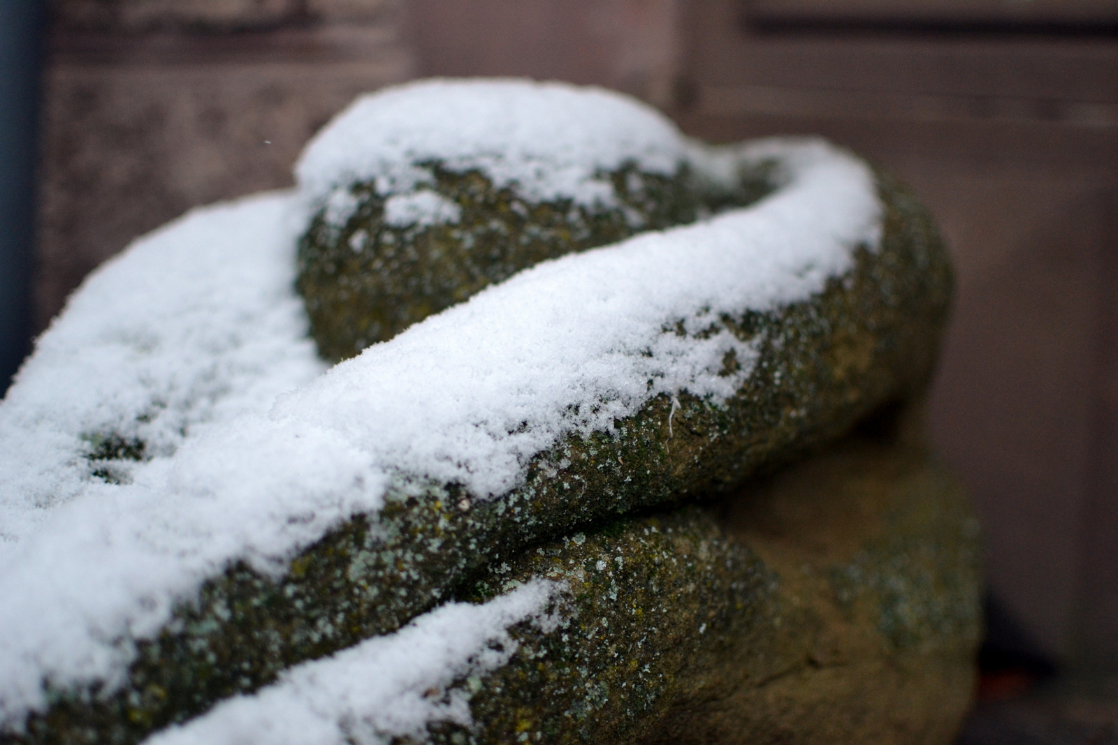 Was macht der Gärtner im Winter?