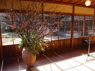 桜 季節の活け込み
