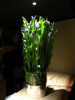 カウンター装花