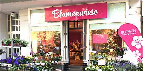 Blumenwiese in Hamburg-Eppendorf
