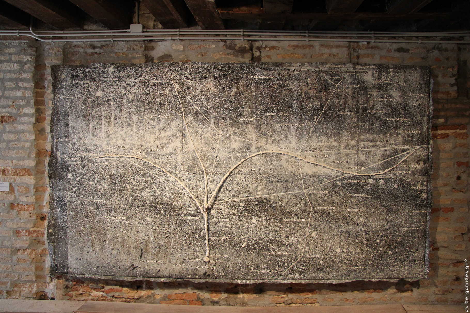 Cosmo, Anselm Kiefer