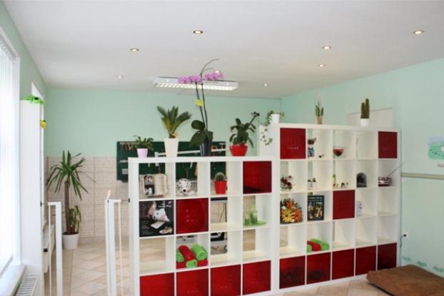Home hundesalon deutsch wagram for Salon wagram
