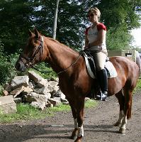 Ich habe in der Vergangenheit mein Pferd mit großem Erfolg ganzheitlich behandelt.