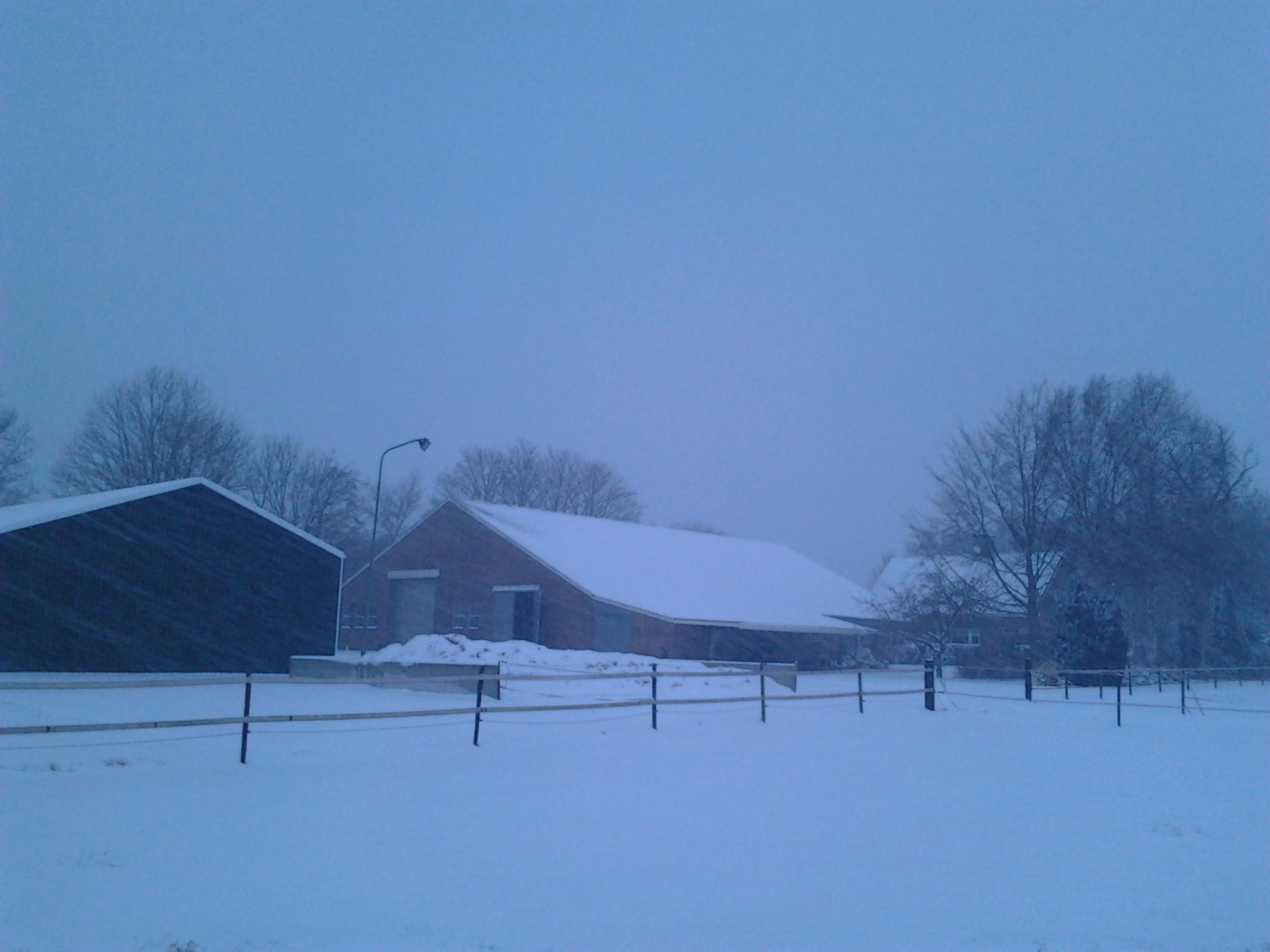 Als het echt slecht weer is (ijzel, storm, onweer) blijven de paarden binnen.