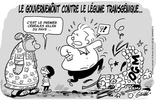 """New Caledonian Government against the GMO crops.. """"He is the first cereal-killer of the country..."""""""