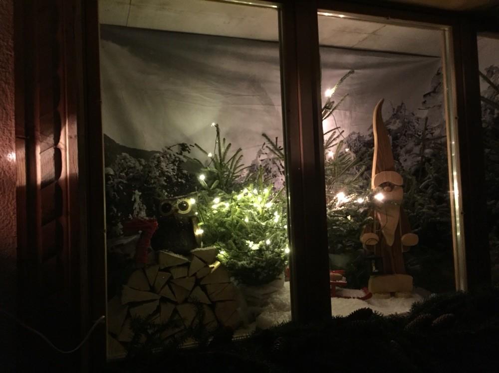 Adventsfenster 2015 Christiane Buchs-Julmy, Dorfstrasse 21, Im Fang