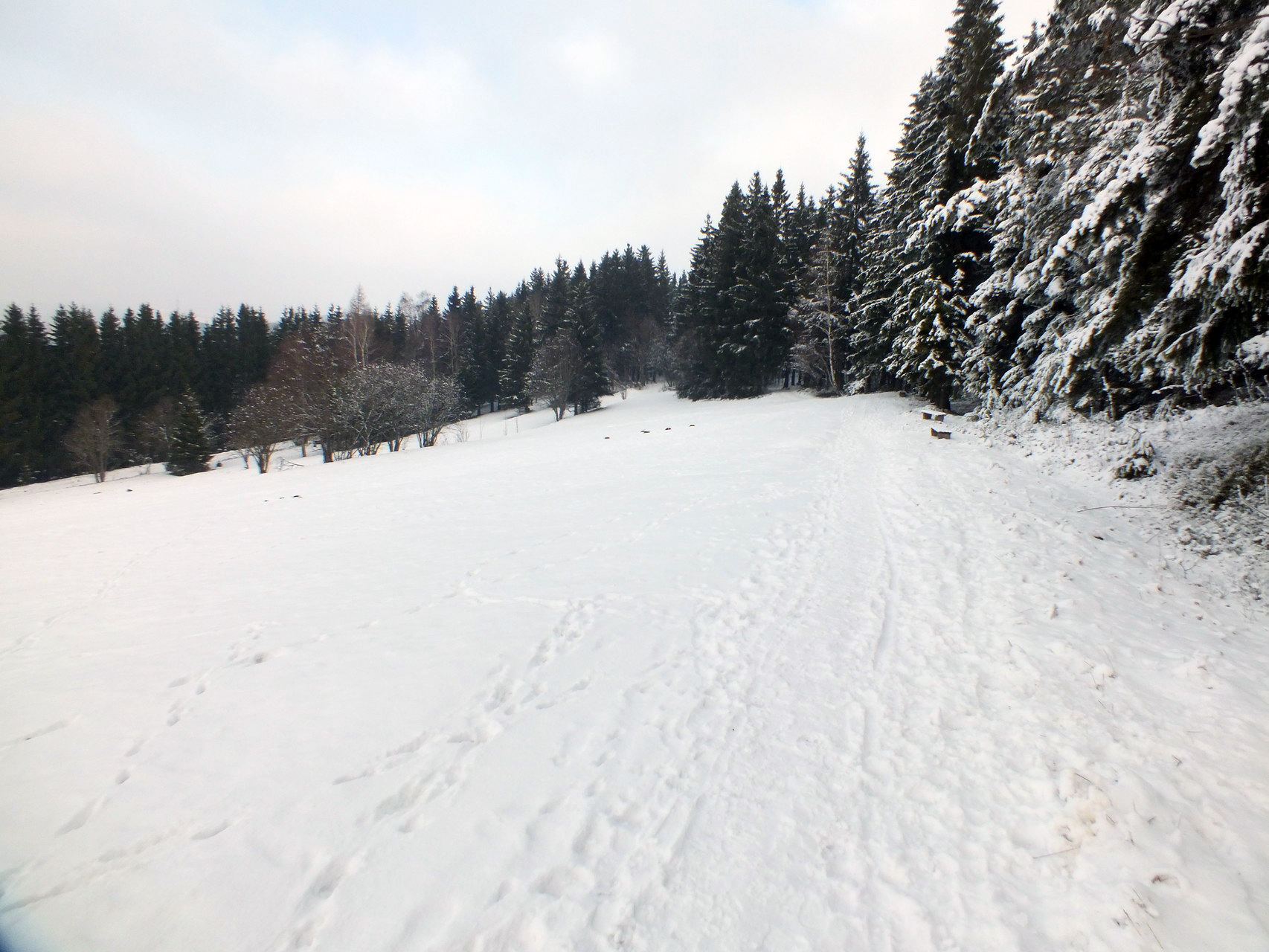 Winter in Oberweißbach - Bild 4