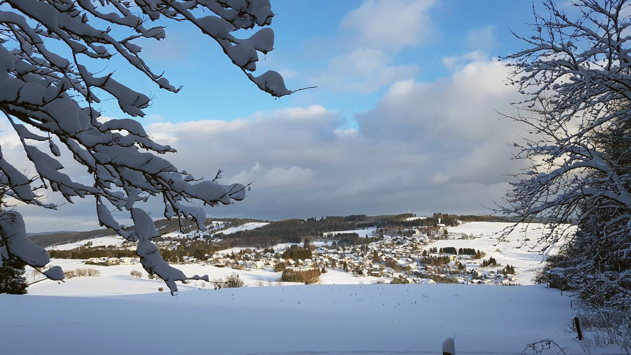 Winter in Oberweißbach - Bild 10