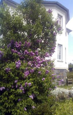 Blick vom unteren Garten auf das Ferienhaus