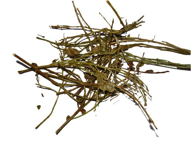 Официальный сайт монастырского чая от простатита
