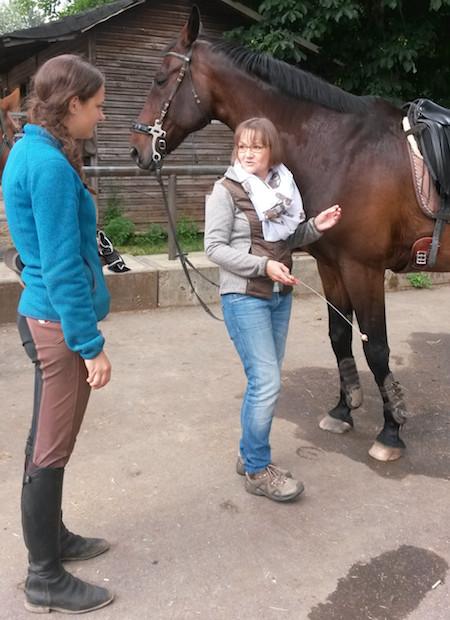 im Dialog mit der Pferdebesitzerin