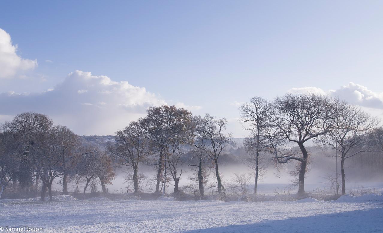 le bocage vieux-marchois sous la neige