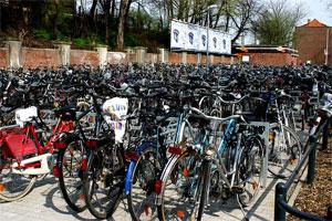 Das Fahrrad wird in Münster von 82 % der Studierenden für den Weg zur Hochschule genutzt Bild: Wikipedia; Rüdiger Wölk, Münster.