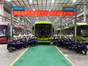 Rollout des 50.000. Elektro-Busses von BYD