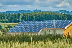 Unternehmen in den alten Bundesländern – insbesondere in Rheinland-Pfalz, Baden-Württemberg und Bayern – führen deutlich mehr Innovationen im Bereich erneuerbarer Energien ein als Unternehmen in Ostdeutschland.