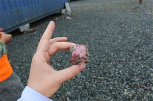 Kobalt-Erz. Bild: First Cobalt