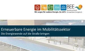 Ziel einer zukunftsfähigen Verkehrs- und Energiepolitik muss es sein, neben der Organisation deutlicher Effizienzsteigerungen den Einsatz Erneuerbarer Energien im Verkehrssektor schnell und deutlich zu erhöhen.
