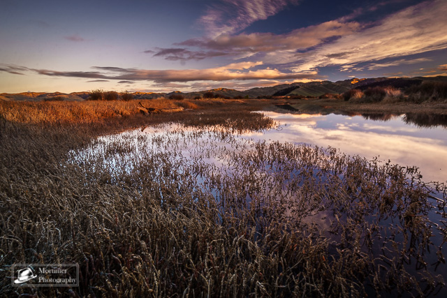Sunset in the salt marsh with amazing color mirroring in the water