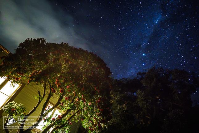 Einmaliger Sternenhimmel über einem Cottage mit Rhododendron im Vordergrund