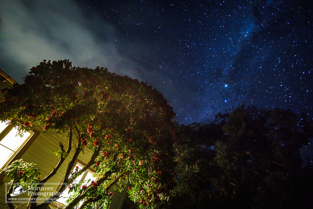 beautiful stars over a cottage with rhododendron in the front