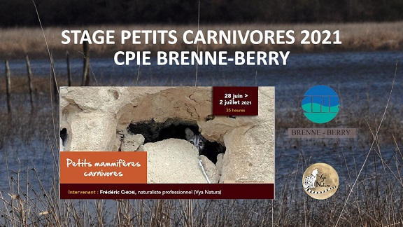 """Formation """"petits carnivores"""" au CPIE Brenne-Berry"""